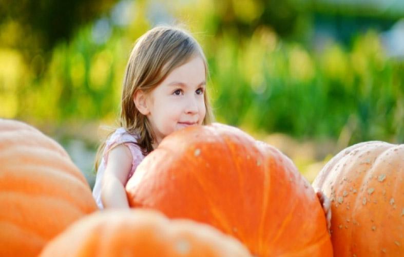 Carving Pumpkins RDI Style