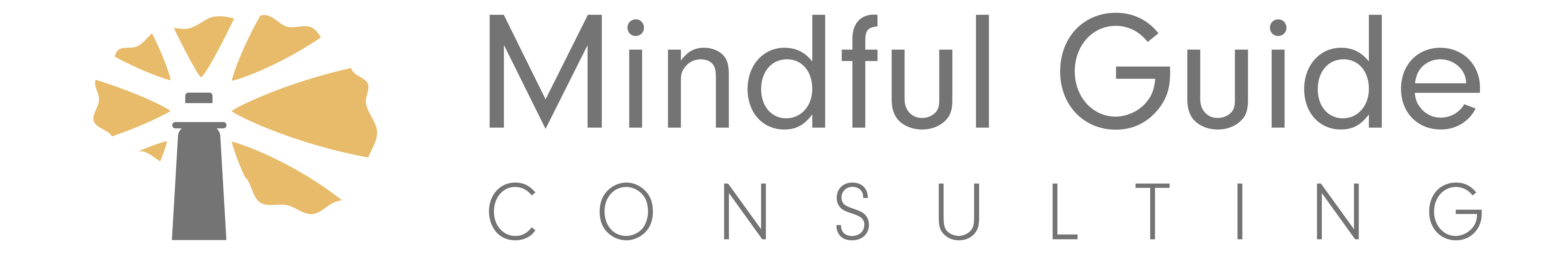 Mindful Guide Consulting
